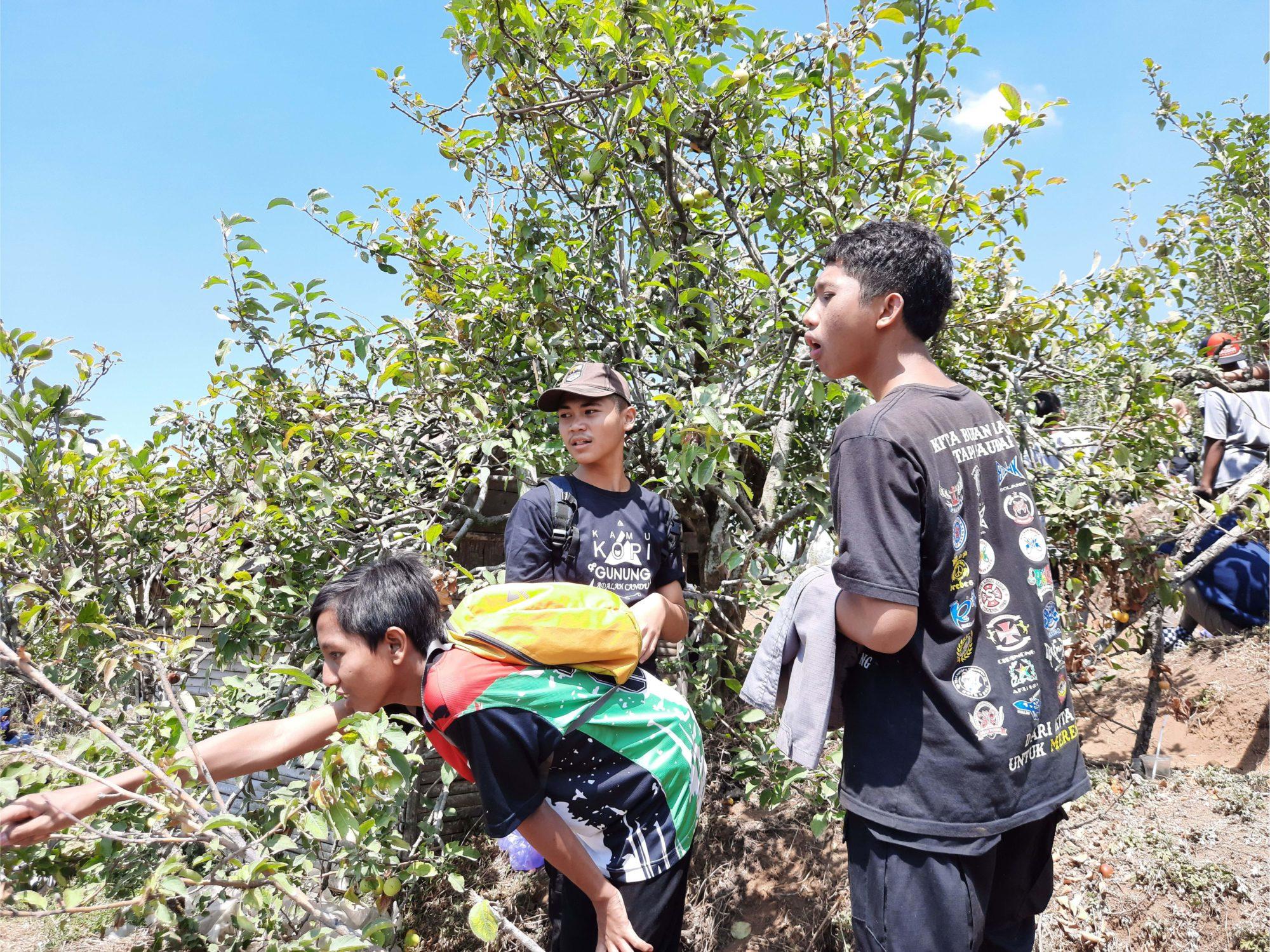 study tour ke wisata petik apel malang